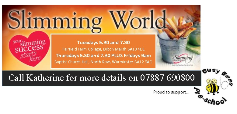 Slimming World Consultant